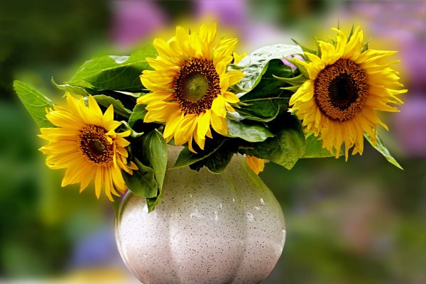 Artificial Plants in Vase